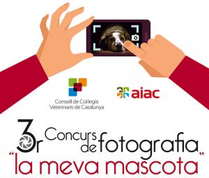 cartell3erconcursfotografia