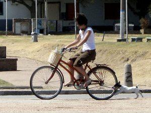 Bikejoring web