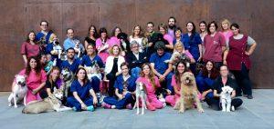 Equip del Dispensari Veterinari del Vallès 2017