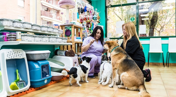 Dispensari Veterinari Cerdanyola del Vallès