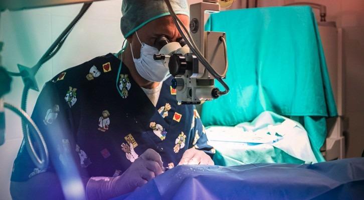 Oftalmologia veterinaria