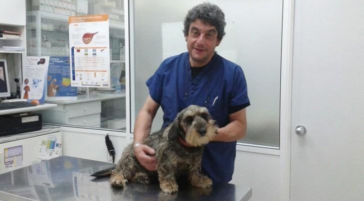 Antoni Crespo - Cap del Servei Veterinari